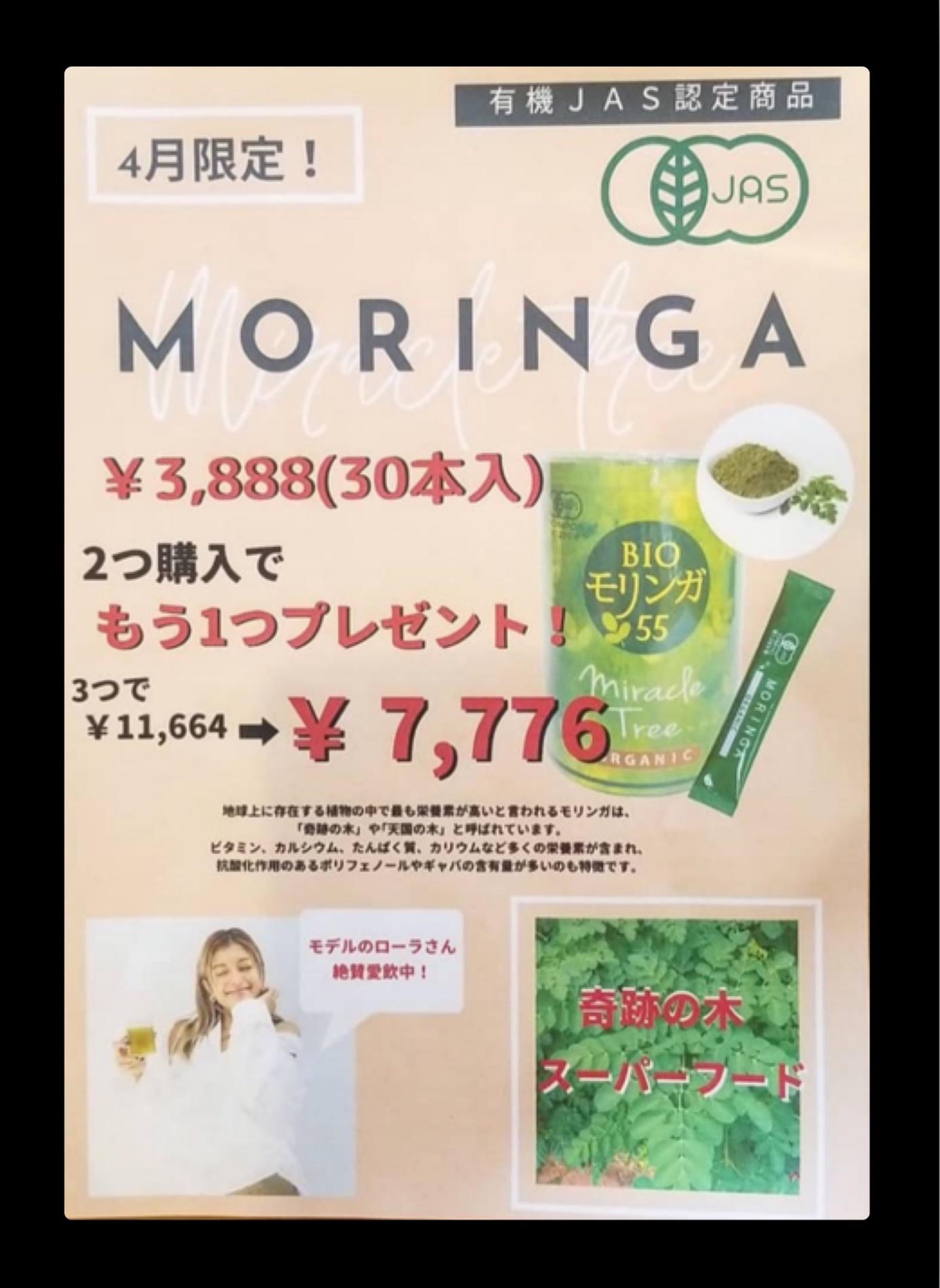 ブログ:モリンガ【キャンペーン】